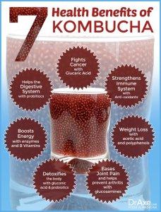 Vibrant Life Oklahoma - 7-Benefits-of-Kombucha