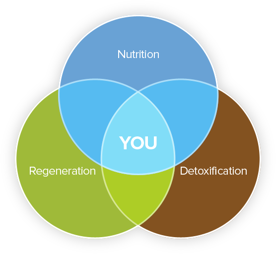 Nutrition Regeneration Detoxification