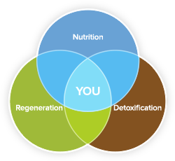 Nutrition, Regeneration, Detoxification and You