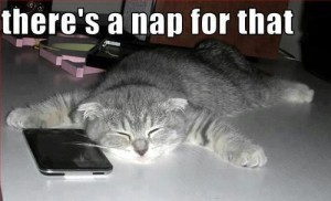 funny-quotes-nap